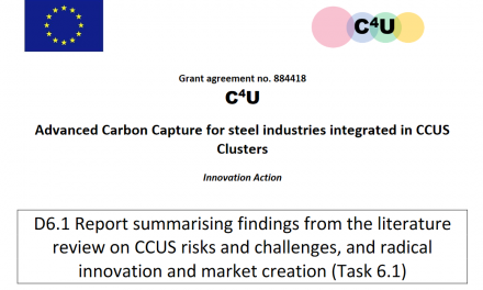 D6.1 Report summarising findings from the literature review on CCUS risks and challenges, and radical innovation and market creation